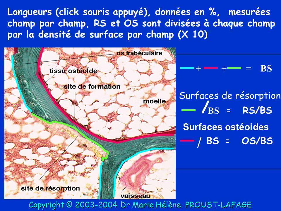 ++=BS / =RS/BS Surfaces de résorption BS=OS/BS / Surfaces ostéoides Longueurs (click souris appuyé), données en %, mesurées champ par champ, RS et OS