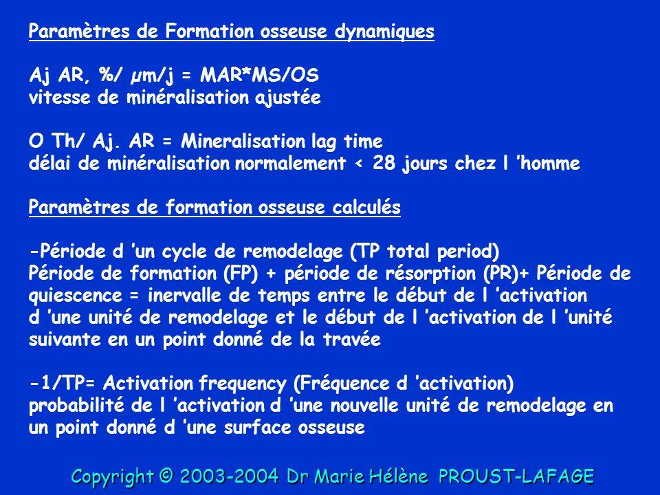 Paramètres de Formation osseuse dynamiques Aj AR, %/ µm/j = MAR*MS/OS vitesse de minéralisation ajustée O Th/ Aj. AR = Mineralisation lag time délai d