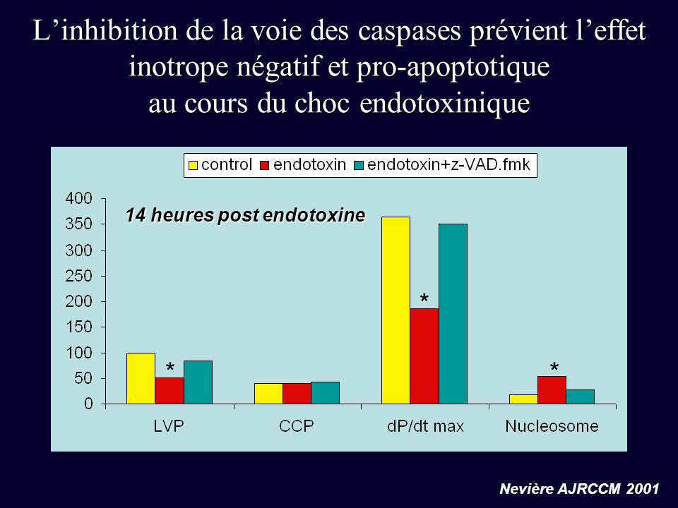 L'inhibition de la voie des caspases prévient l'effet inotrope négatif et pro-apoptotique au cours du choc endotoxinique Nevière AJRCCM 2001 14 heures
