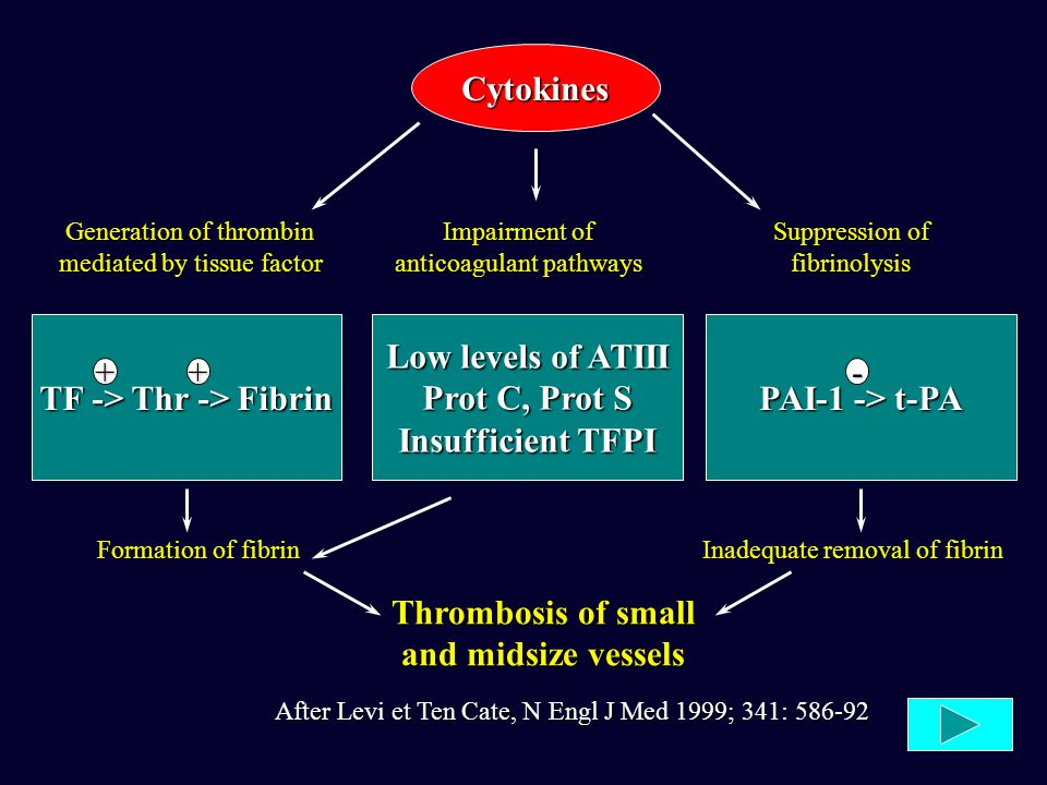 Low levels of ATIII Prot C, Prot S Insufficient TFPI After Levi et Ten Cate, N Engl J Med 1999; 341: 586-92 Cytokines Generation of thrombin mediated