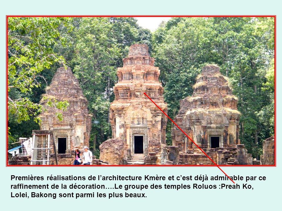 Fruits succulents du Jacquier Fleur de lotus Le drapeau cambodgien