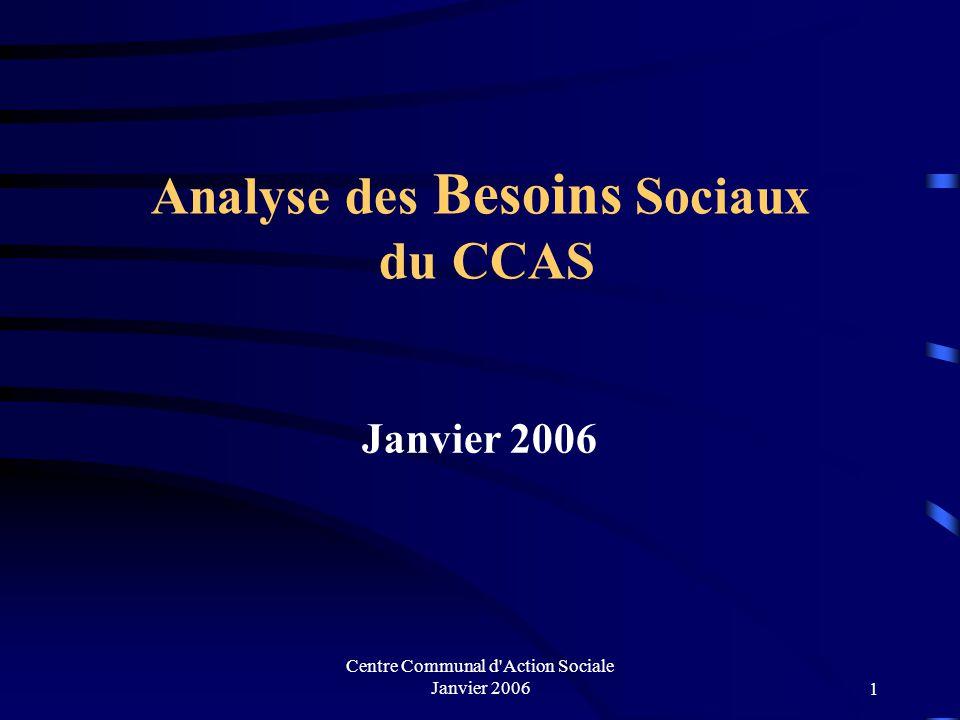 Centre Communal d Action Sociale Janvier 20061 Analyse des Besoins Sociaux du CCAS Janvier 2006