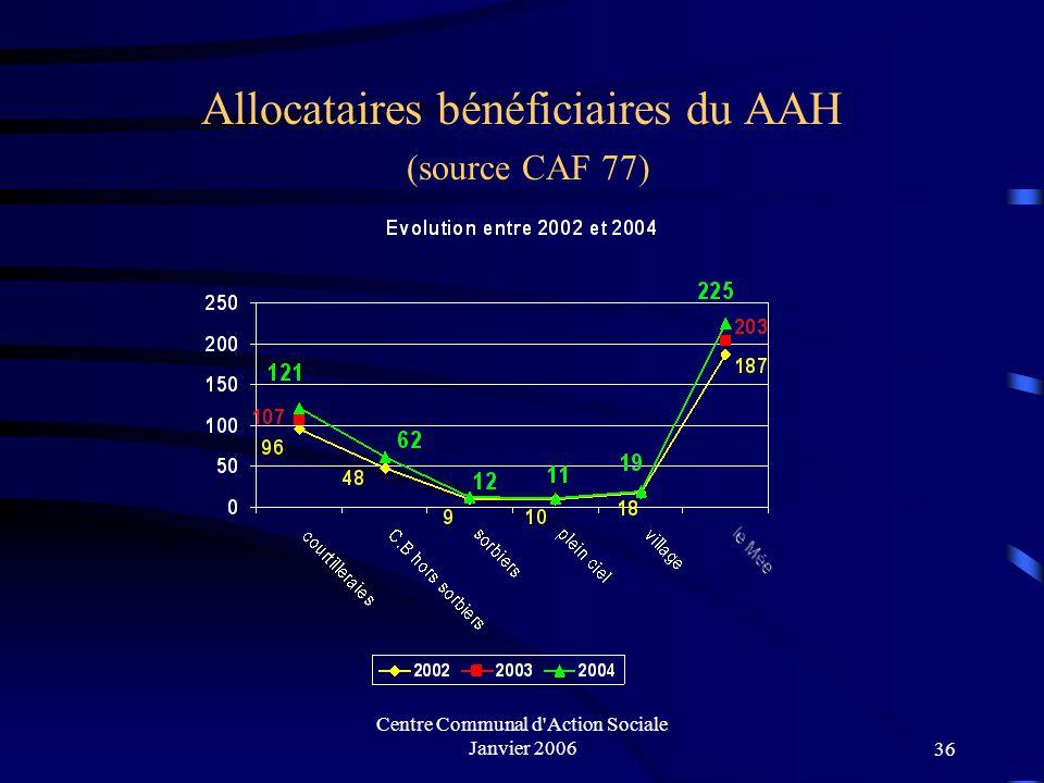 Centre Communal d Action Sociale Janvier 200635 Allocataires bénéficiaires du API (source CAF 77)