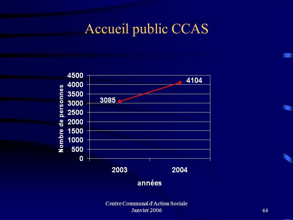 Centre Communal d'Action Sociale Janvier 200643 II. Centre Communal d'Action Sociale Année 2004