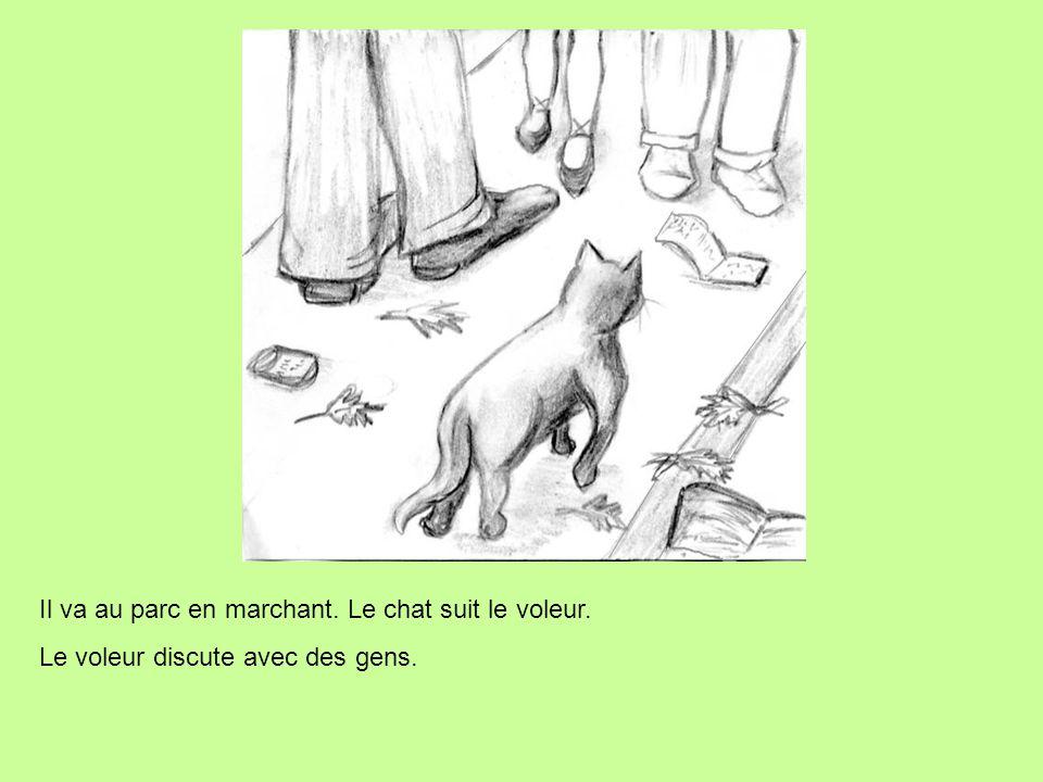 Il va au parc en marchant. Le chat suit le voleur. Le voleur discute avec des gens.