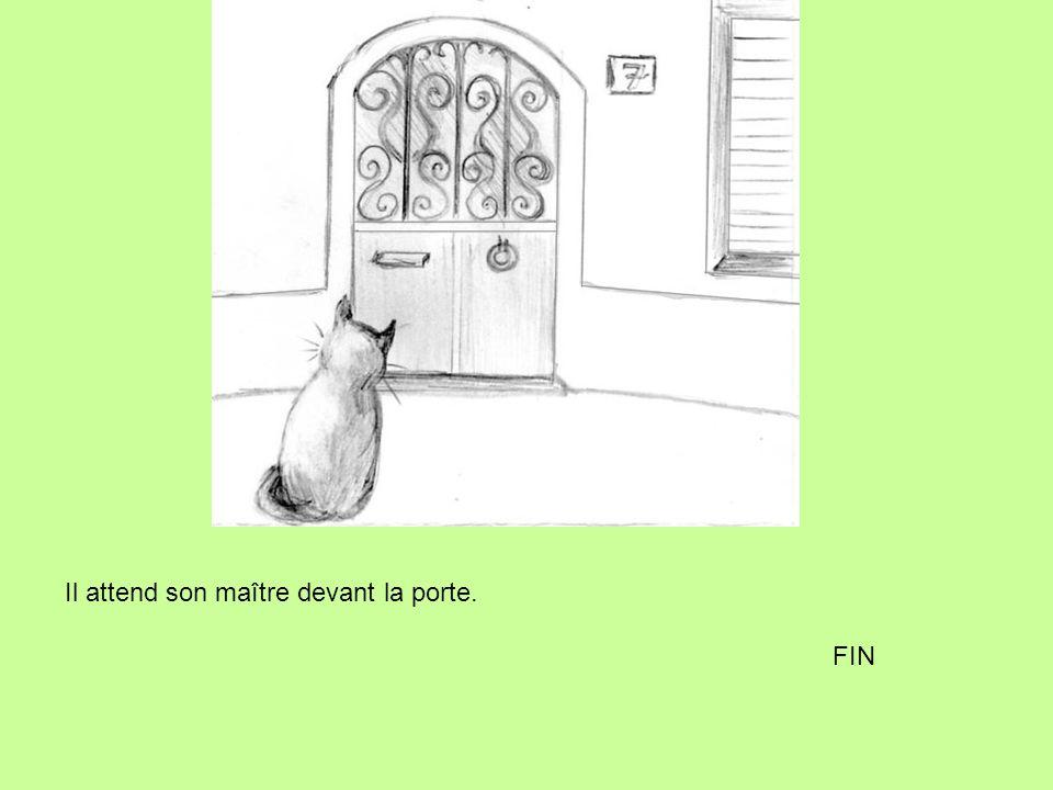 Il attend son maître devant la porte. FIN