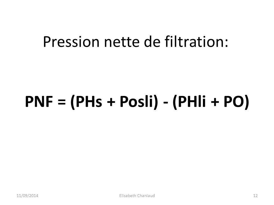 Pression nette de filtration: PNF = (PHs + Posli) - (PHli + PO) 11/09/201412Elisabeth Chaniaud