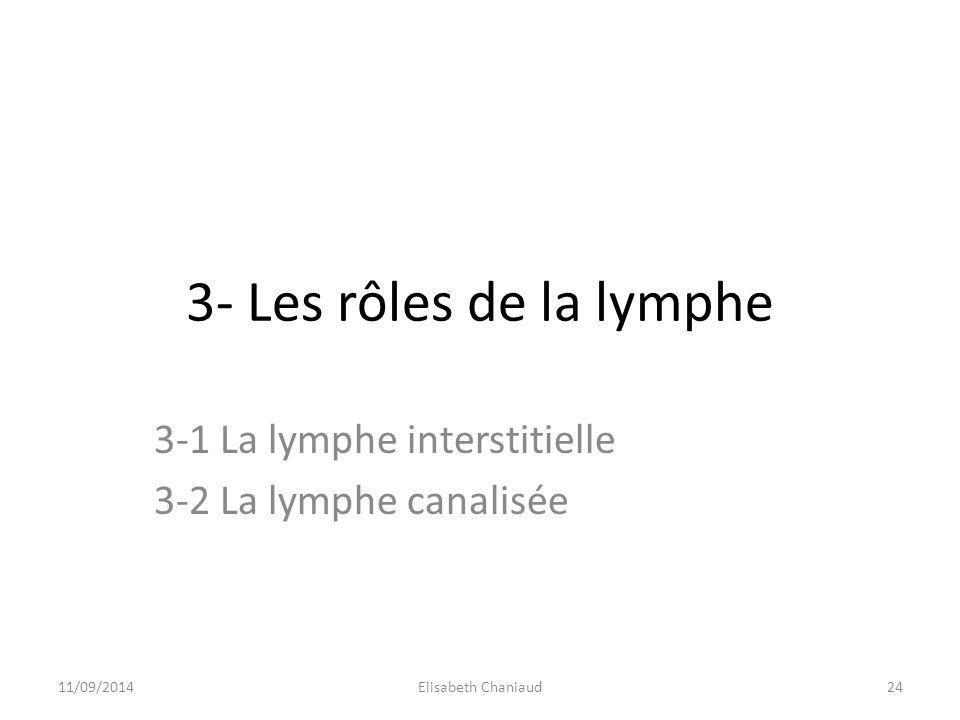 3- Les rôles de la lymphe 3-1 La lymphe interstitielle 3-2 La lymphe canalisée 11/09/201424Elisabeth Chaniaud