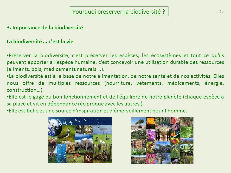 10 Pourquoi préserver la biodiversité ? 3. Importance de la biodiversité La biodiversité... c'est la vie Préserver la biodiversité, c'est préserver le