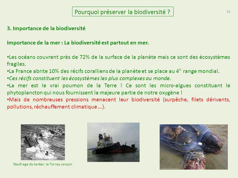 16 Pourquoi préserver la biodiversité ? 3. Importance de la biodiversité Importance de la mer : La biodiversité est partout en mer. Les océans couvren
