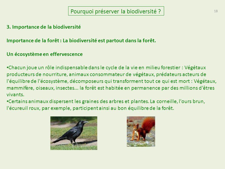 18 Pourquoi préserver la biodiversité ? 3. Importance de la biodiversité Importance de la forêt : La biodiversité est partout dans la forêt. Un écosys