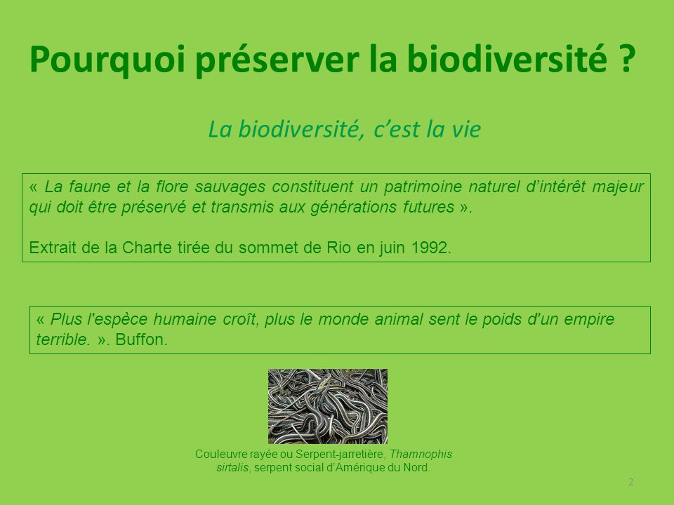 2 « La faune et la flore sauvages constituent un patrimoine naturel d'intérêt majeur qui doit être préservé et transmis aux générations futures ». Ext