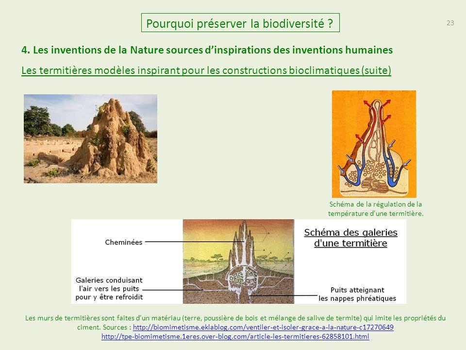 23 Pourquoi préserver la biodiversité ? 4. Les inventions de la Nature sources d'inspirations des inventions humaines Les termitières modèles inspiran