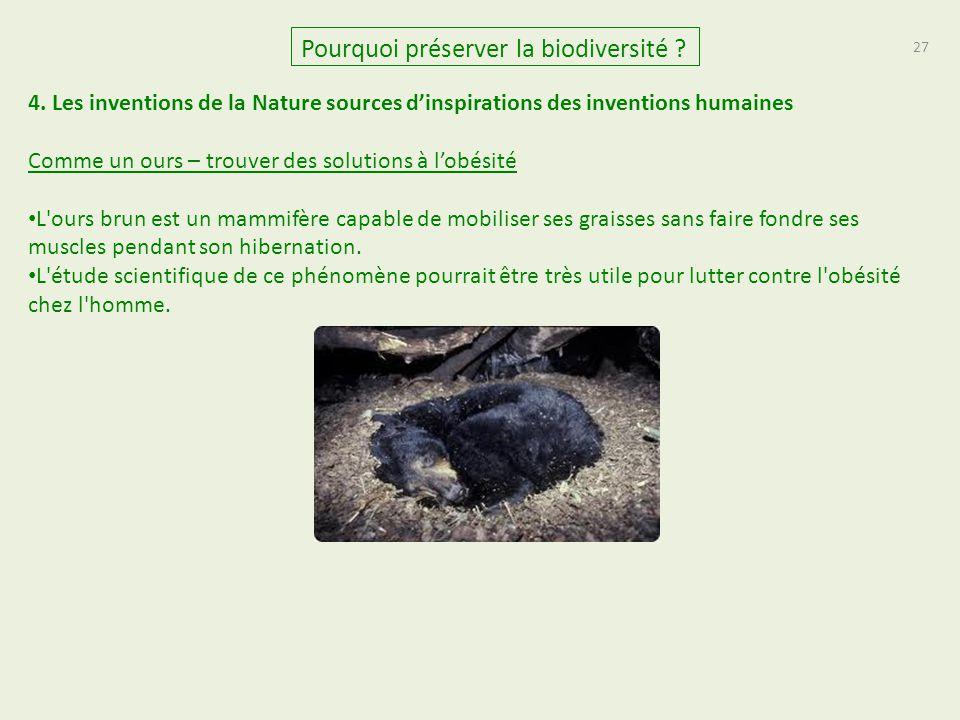 27 Pourquoi préserver la biodiversité ? 4. Les inventions de la Nature sources d'inspirations des inventions humaines Comme un ours – trouver des solu