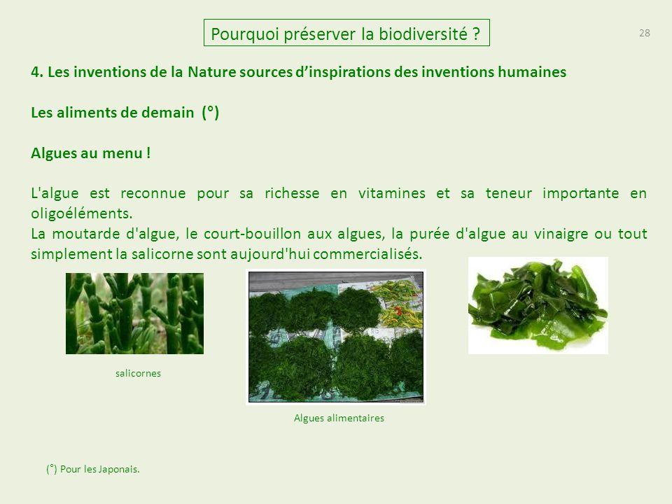 28 Pourquoi préserver la biodiversité ? 4. Les inventions de la Nature sources d'inspirations des inventions humaines Les aliments de demain (°) Algue