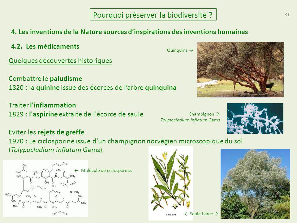 31 Quelques découvertes historiques Combattre le paludisme 1820 : la quinine issue des écorces de l'arbre quinquina Traiter l'inflammation 1829 : l'as