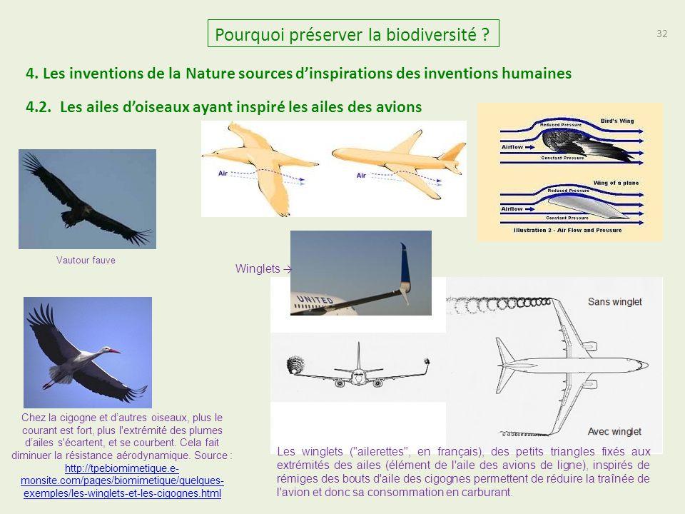 32 Pourquoi préserver la biodiversité ? 4.2. Les ailes d'oiseaux ayant inspiré les ailes des avions 4. Les inventions de la Nature sources d'inspirati