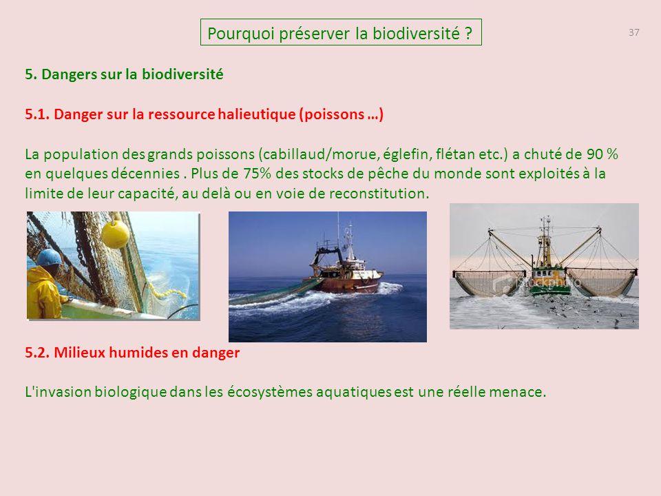 37 Pourquoi préserver la biodiversité ? 5. Dangers sur la biodiversité 5.1. Danger sur la ressource halieutique (poissons …) La population des grands