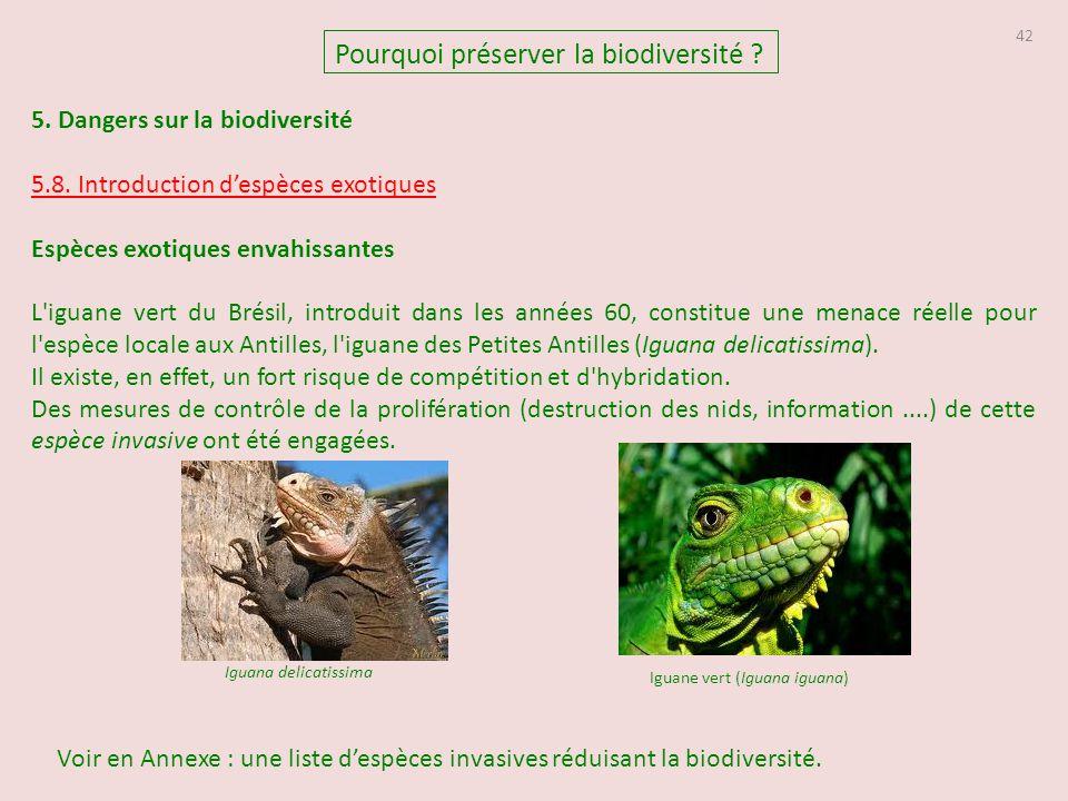 42 5. Dangers sur la biodiversité 5.8. Introduction d'espèces exotiques Espèces exotiques envahissantes L'iguane vert du Brésil, introduit dans les an