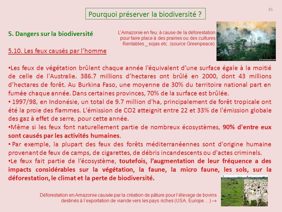 5. Dangers sur la biodiversité 5.10. Les feux causés par l'homme Les feux de végétation brûlent chaque année l'équivalent d'une surface égale à la moi