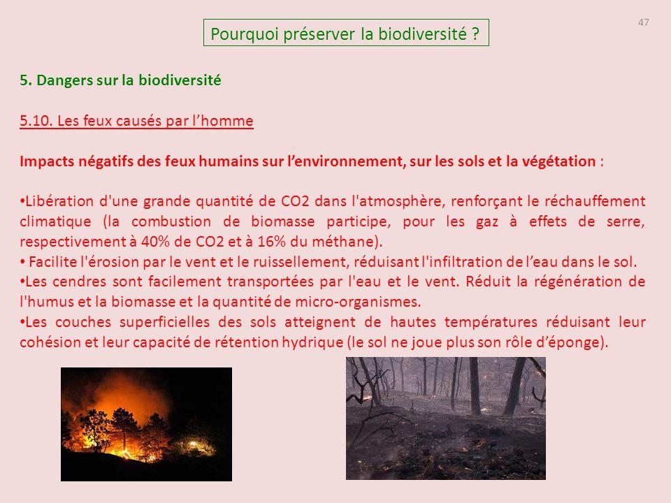5. Dangers sur la biodiversité 5.10. Les feux causés par l'homme Impacts négatifs des feux humains sur l'environnement, sur les sols et la végétation