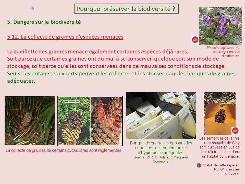 5. Dangers sur la biodiversité 5.12. La collecte de graines d'espèces menacés La cueillette des graines menace également certaines espèces déjà rares.