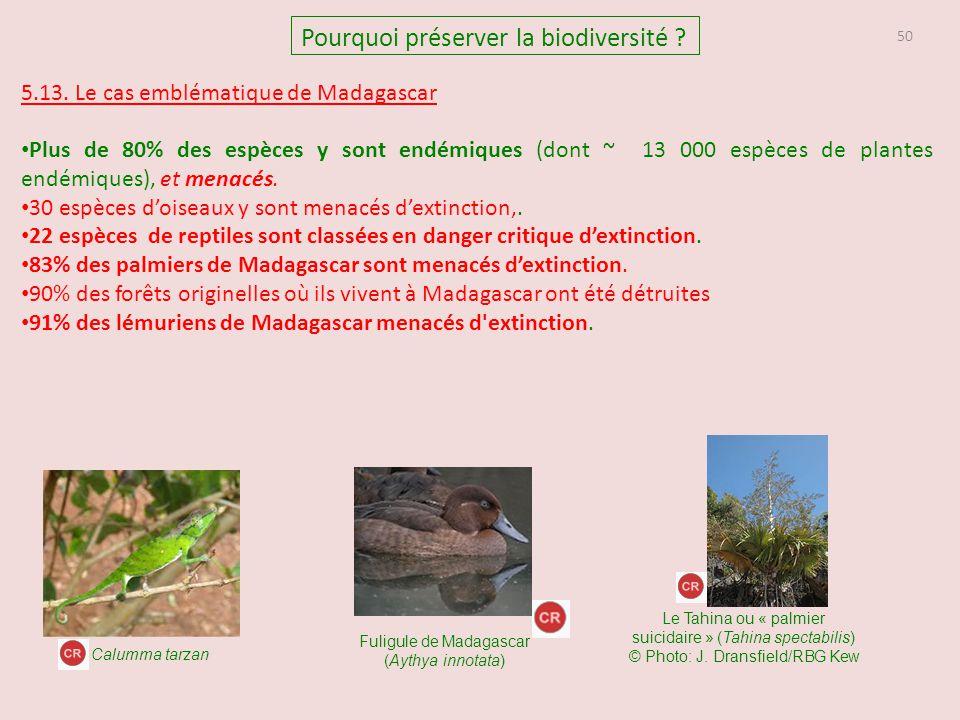50 Pourquoi préserver la biodiversité ? 5.13. Le cas emblématique de Madagascar Plus de 80% des espèces y sont endémiques (dont ~ 13 000 espèces de pl