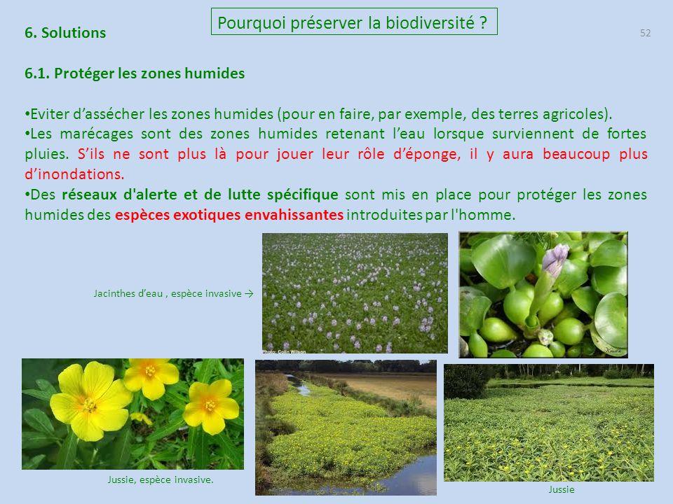 52 Pourquoi préserver la biodiversité ? 6. Solutions 6.1. Protéger les zones humides Eviter d'assécher les zones humides (pour en faire, par exemple,
