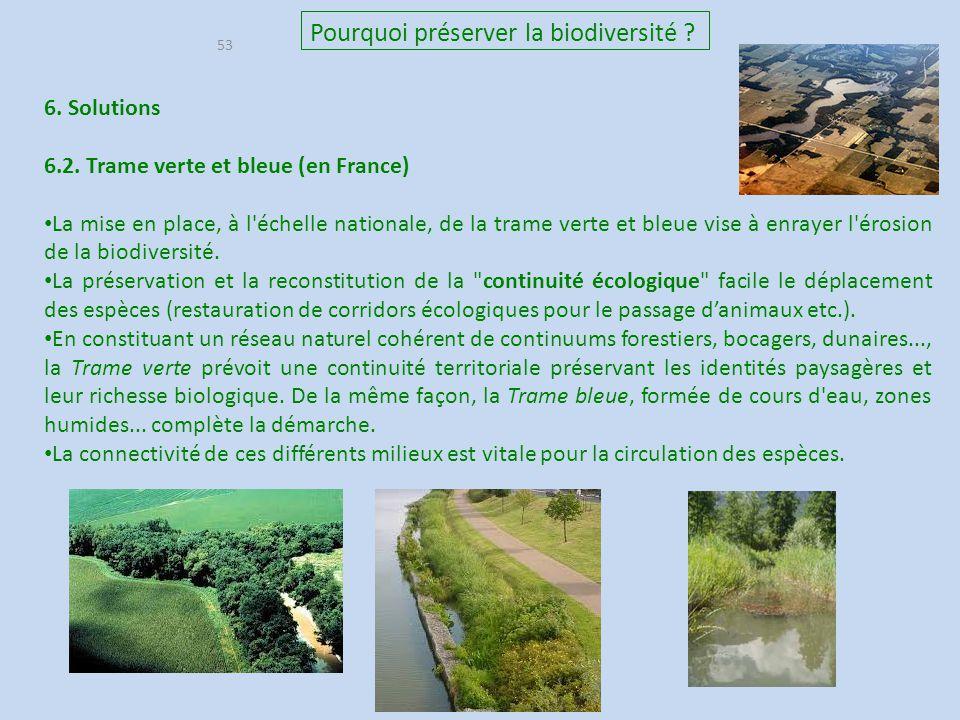 53 Pourquoi préserver la biodiversité ? 6. Solutions 6.2. Trame verte et bleue (en France) La mise en place, à l'échelle nationale, de la trame verte