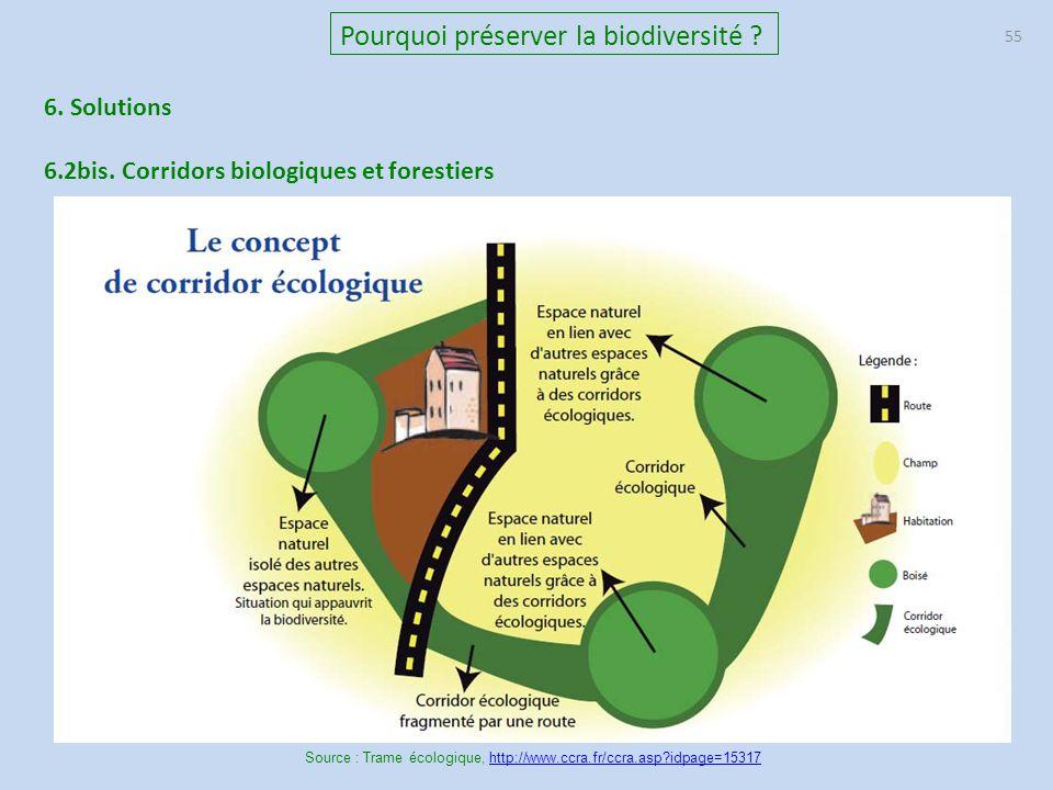 55 Pourquoi préserver la biodiversité ? 6. Solutions 6.2bis. Corridors biologiques et forestiers Source : Trame écologique, http://www.ccra.fr/ccra.as