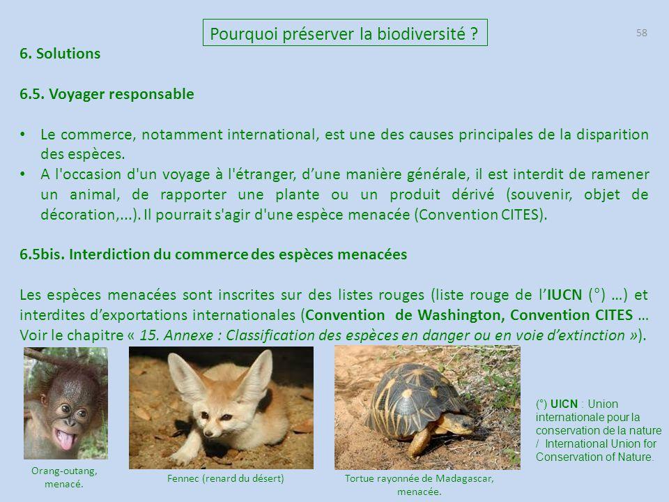58 Pourquoi préserver la biodiversité ? 6. Solutions 6.5. Voyager responsable Le commerce, notamment international, est une des causes principales de