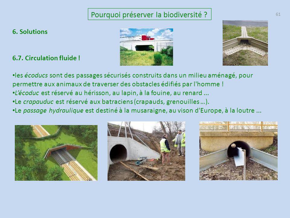 61 Pourquoi préserver la biodiversité ? 6. Solutions 6.7. Circulation fluide ! les écoducs sont des passages sécurisés construits dans un milieu aména