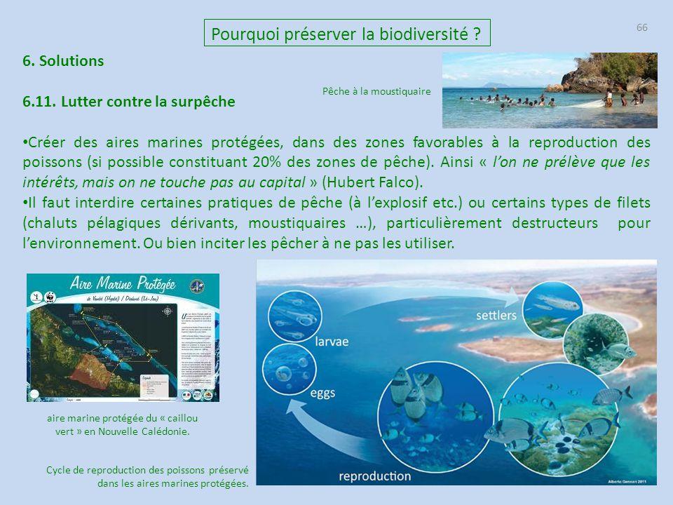 66 6. Solutions 6.11. Lutter contre la surpêche Créer des aires marines protégées, dans des zones favorables à la reproduction des poissons (si possib