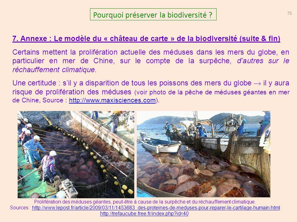 75 Pourquoi préserver la biodiversité ? 7. Annexe : Le modèle du « château de carte » de la biodiversité (suite & fin) Certains mettent la proliférati