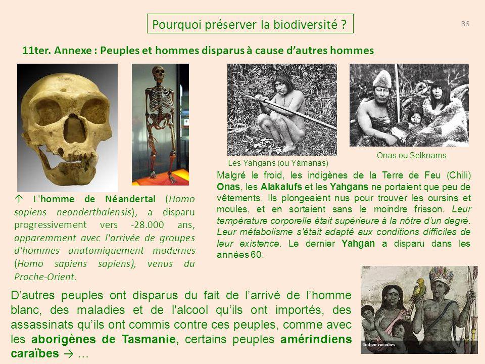 11ter. Annexe : Peuples et hommes disparus à cause d'autres hommes 86 Pourquoi préserver la biodiversité ? Les Yahgans (ou Yámanas) Onas ou Selknams M