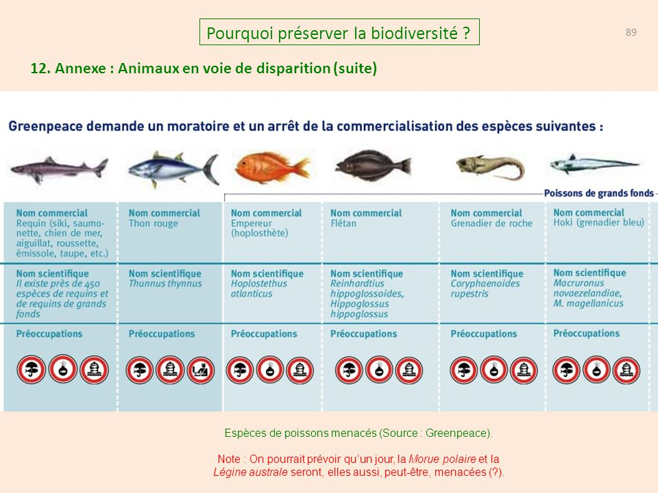 12. Annexe : Animaux en voie de disparition (suite) 89 Pourquoi préserver la biodiversité ? Espèces de poissons menacés (Source : Greenpeace). Note :