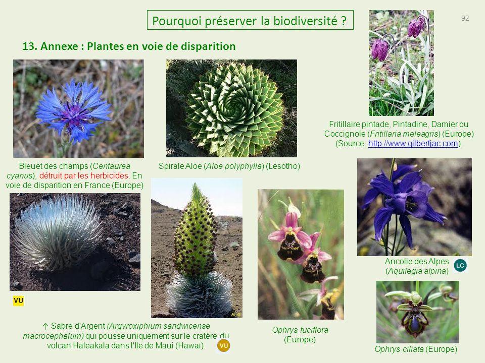 13. Annexe : Plantes en voie de disparition 92 Pourquoi préserver la biodiversité ? Bleuet des champs (Centaurea cyanus), détruit par les herbicides.
