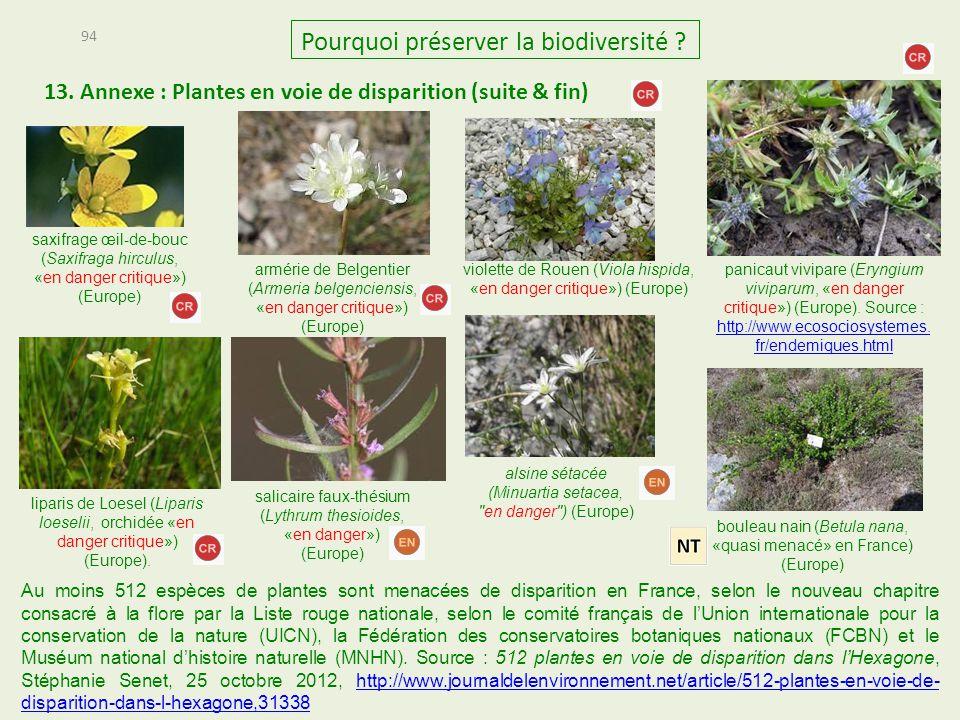 saxifrage œil-de-bouc (Saxifraga hirculus, «en danger critique») (Europe) 13. Annexe : Plantes en voie de disparition (suite & fin) 94 Pourquoi préser