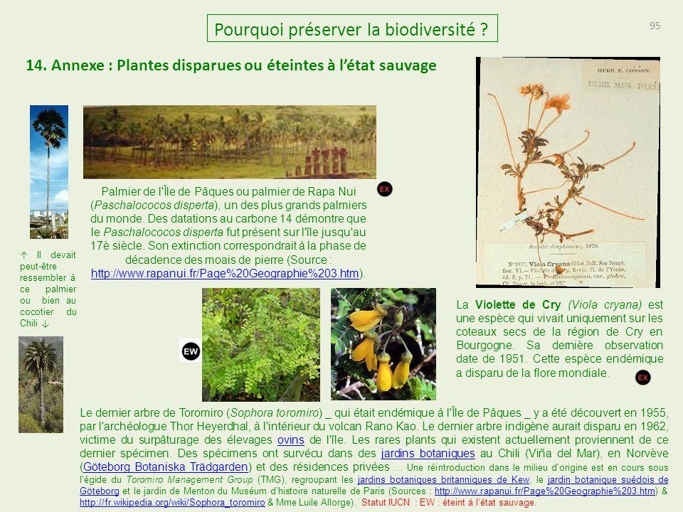 14. Annexe : Plantes disparues ou éteintes à l'état sauvage 95 Pourquoi préserver la biodiversité ? La Violette de Cry (Viola cryana) est une espèce q