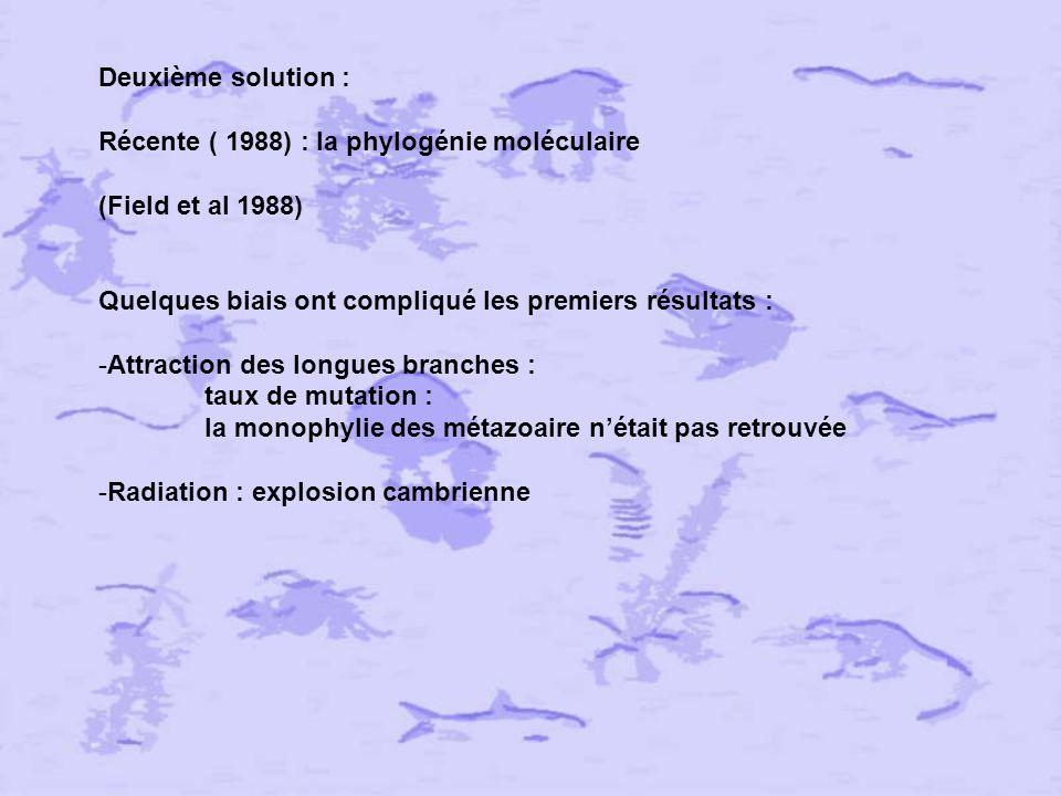 Affinités phylogénétiques des Lophophorata in: Emig C.