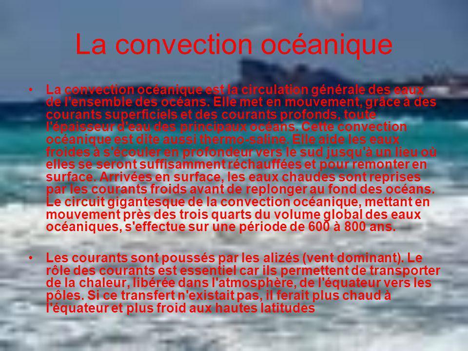 La convection océanique La convection océanique est la circulation générale des eaux de l'ensemble des océans. Elle met en mouvement, grâce à des cour