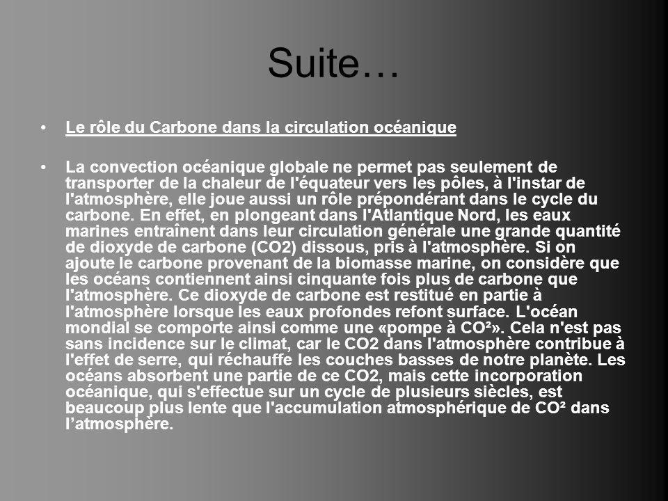 Suite… Le rôle du Carbone dans la circulation océanique La convection océanique globale ne permet pas seulement de transporter de la chaleur de l'équa