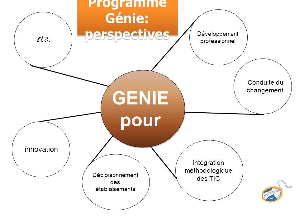 Développement professionnel innovation Décloisonnement des établissements Intégration méthodologique des TIC GENIE pour etc. Conduite du changement Pr