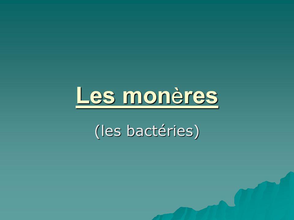 Les mon è res (les bactéries)