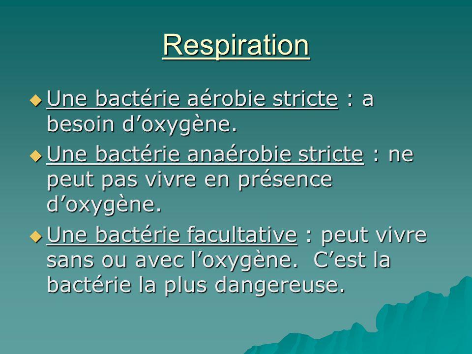 Respiration  Une bactérie aérobie stricte : a besoin d'oxygène.  Une bactérie anaérobie stricte : ne peut pas vivre en présence d'oxygène.  Une bac