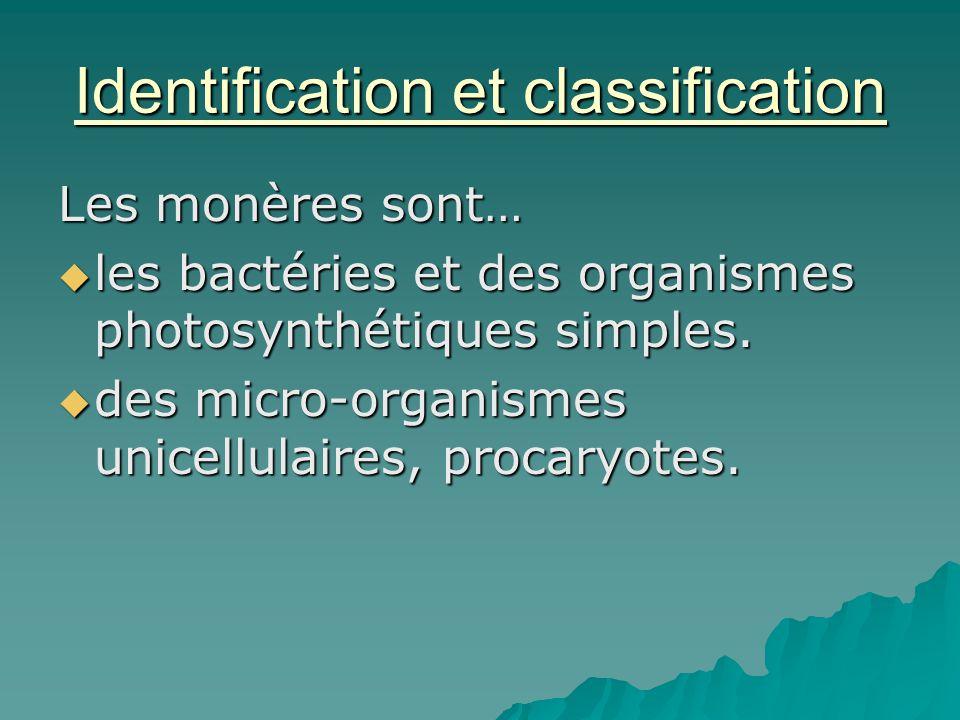 Identification et classification Les monères sont…  les bactéries et des organismes photosynthétiques simples.  des micro-organismes unicellulaires,
