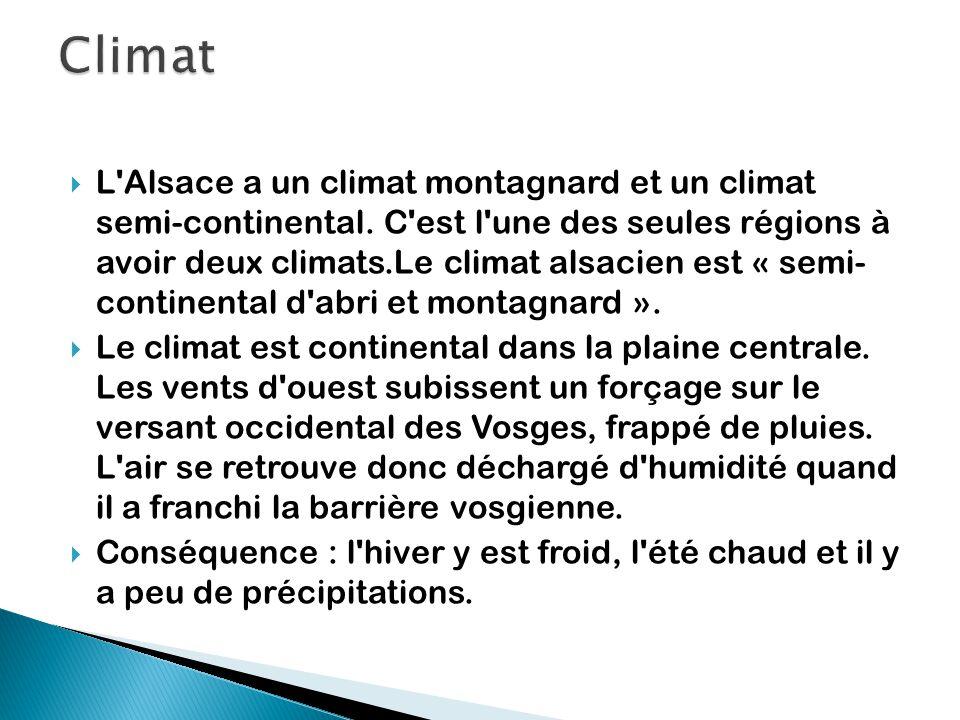  L'Alsace a un climat montagnard et un climat semi-continental. C'est l'une des seules régions à avoir deux climats.Le climat alsacien est « semi- co