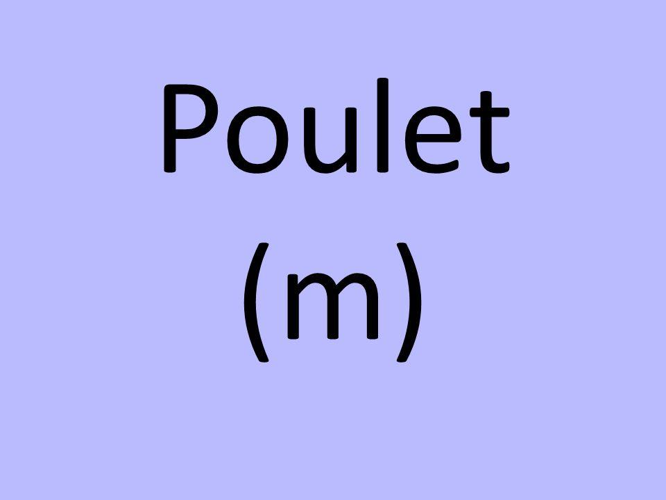 Poulet (m)