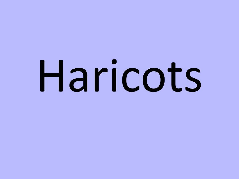 Haricots