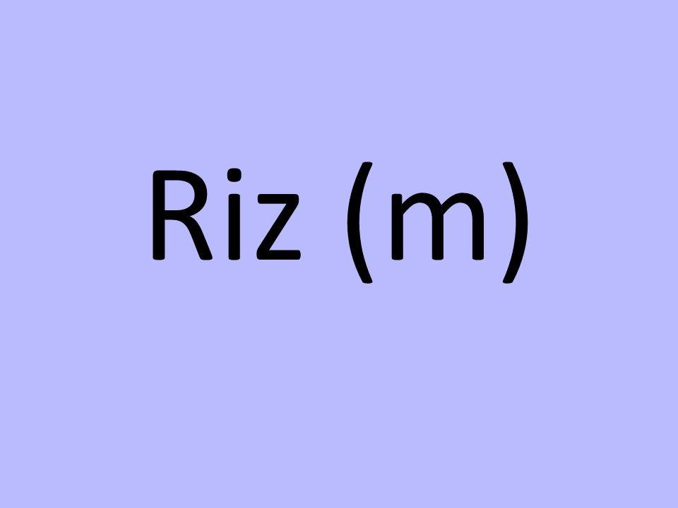Riz (m)